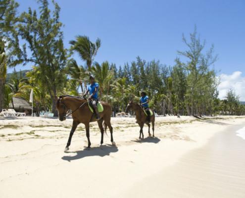 Hotel Riu Creole Horseriding